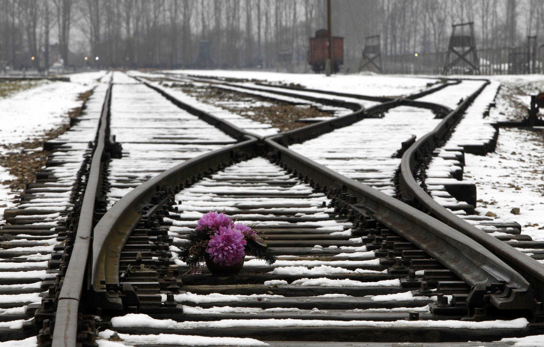Des fleurs déposées sur les rails en hommage aux victimes du camp nazi d'Auschwitz (Pologne), pendant les cérémonies du souvenir, le 27 janvier 2011. (Image d'illustration)