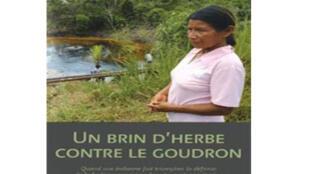 Couverture du livre «Un brin d'herbe contre le goudron», de Maria Aguinda et Patrick Bèle publié aux Editions Michel Lafon.
