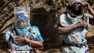 Les démineurs de la Casamance au Sénégal travaillent pour débarrasser le sol des engins explosifs présents partout dans la région.