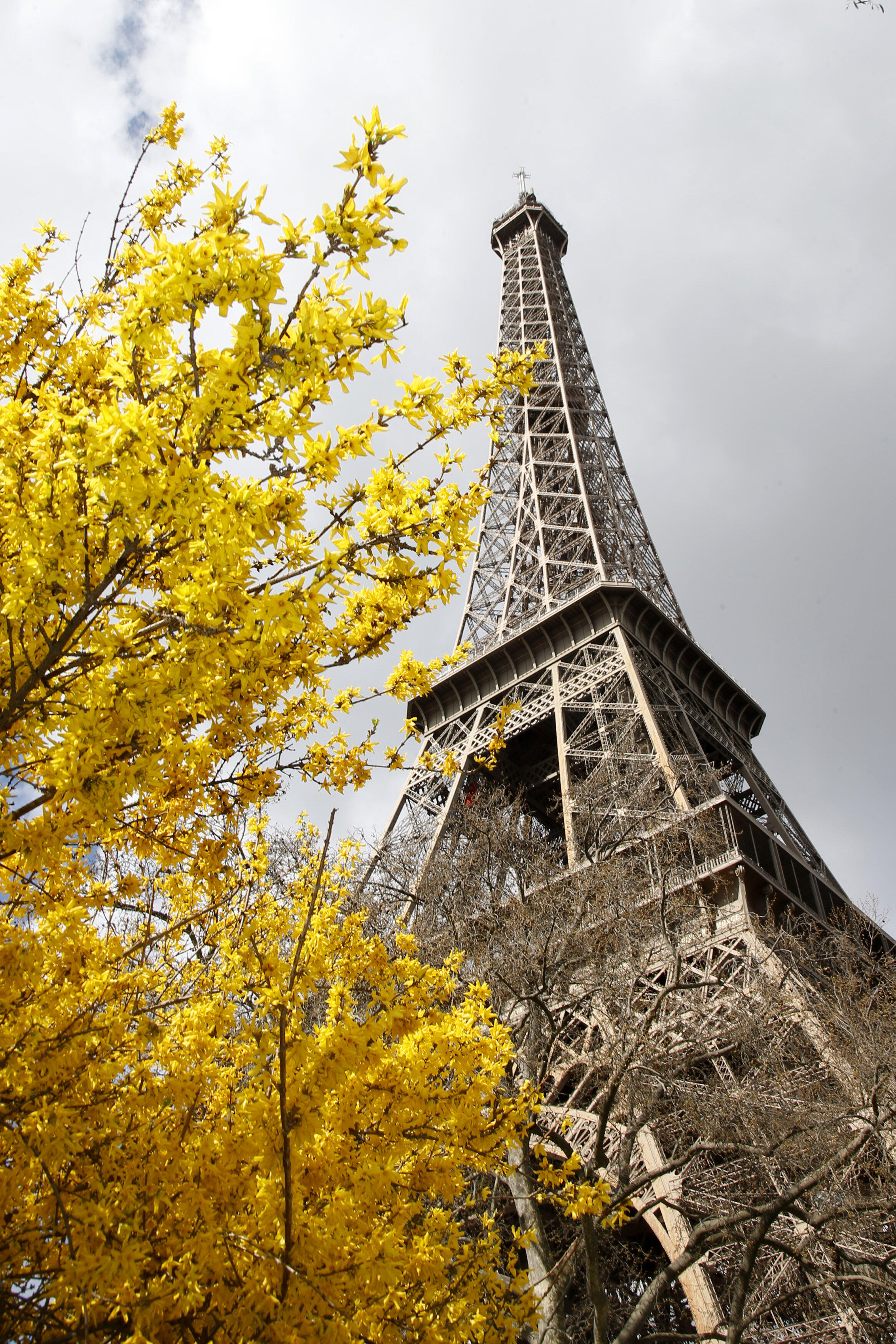 Tháp Eiffel vào mùa xuân.