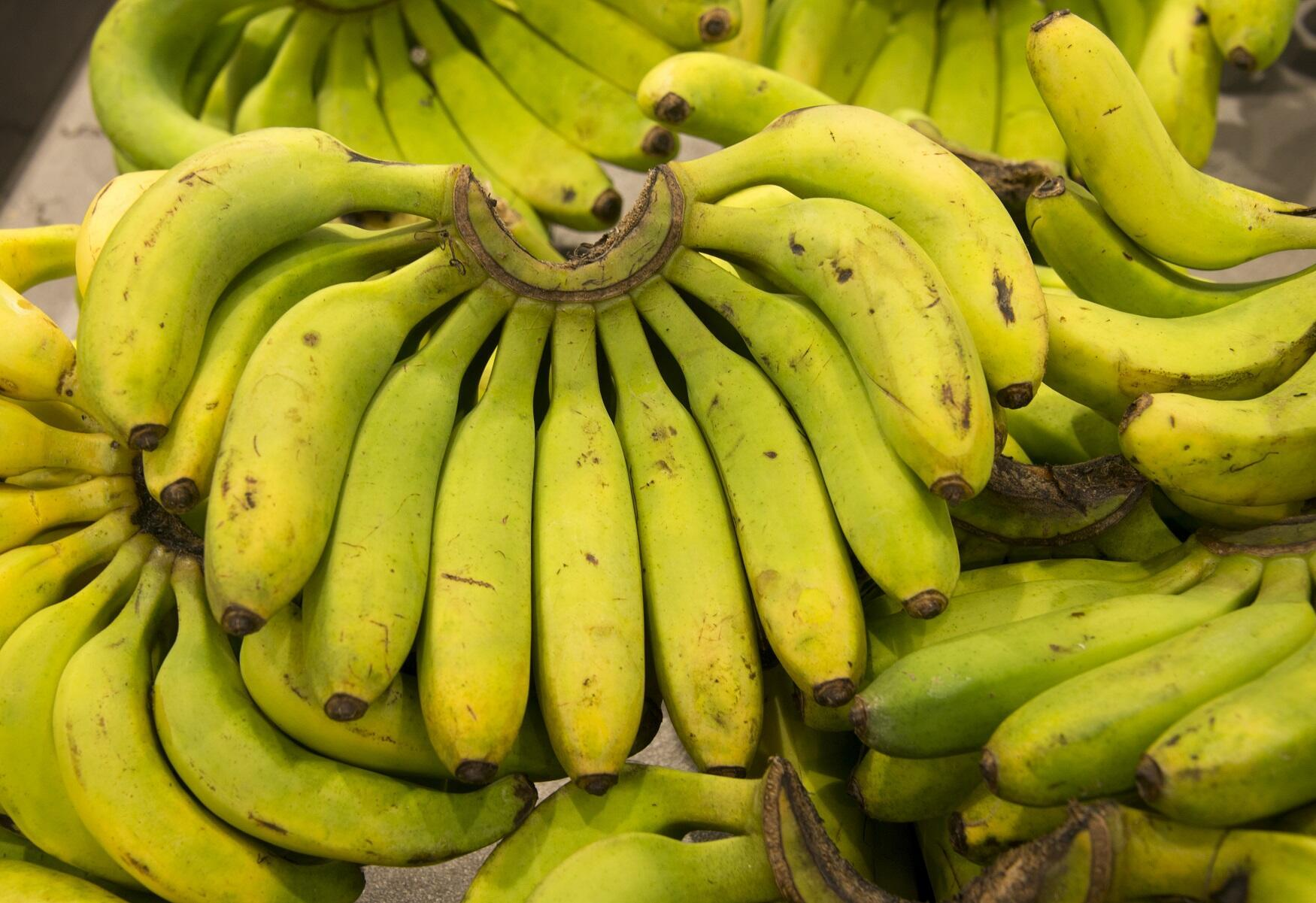 Plátanos en un mercado de Saint-François, en la isla de Guadalupe.