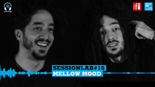 Le groupe de reggae italien Mellow Mood.