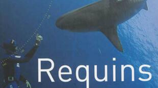 Couverture du livre «Requins, au-delà du malentendu», de Robert Calcagno.