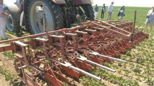 Désherbage mécanique dans la ferme de Grégoire Lhotte, agriculteur à Venette, dans le Département de l'Oise, dans la Région Hauts de France.