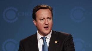 David Cameron,  Premier ministre britannique.