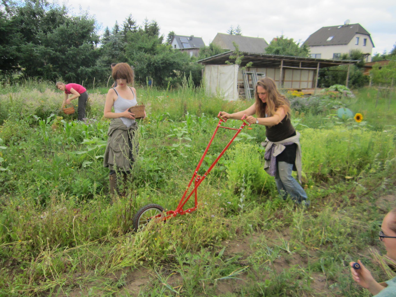Johanna Häger sur sa ferme en permaculture, non loin de Berlin.