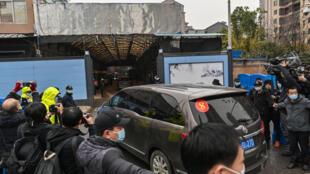 Miembros del equipo de la OMS que investigan los orígenes del coronavirus llegan al mercado de Huanan, en Wuhan (China), el 31 de enero de 2021