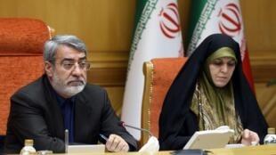 عبدالرضا رحمانی فضلی در جلسه شورای اجتماعی کشور در بارۀ موضوع حجاب سخن گفت