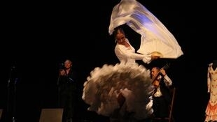 """El festival """"Arte Flamenco"""" de Mont-de-Marsan tendrá lugar del 2 al 7 de julio."""