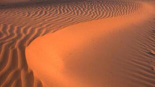 Les dunes de Westhoek en Belgique.