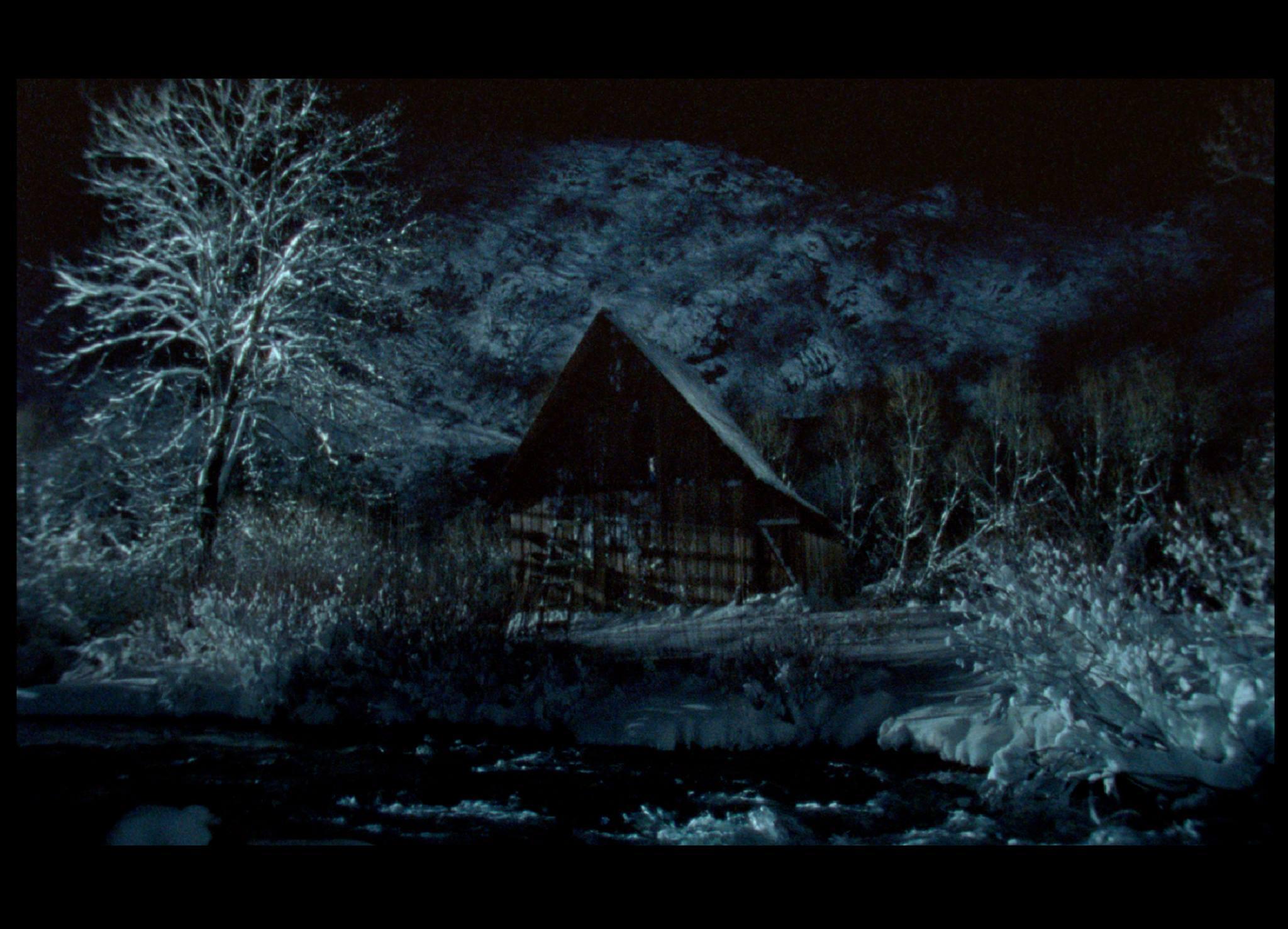 """Filme """"A Árvore"""" vai estrear-se em França"""