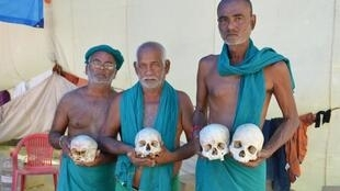 Tamil Nadu farmers holding the skulls of colleagues who committed suicide.