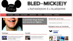 Une vue du site Bled-Mickey.