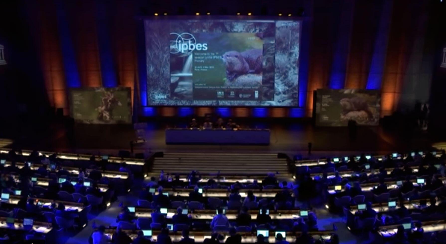 Sétima sessão plenária do IPBES acontece na Unesco, de 29 de abril a 4 de Maio de 2019.
