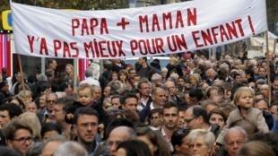 Манифестация противников законопроекта о легализации во Франции однополых браков. Париж, 17 ноября 2012.