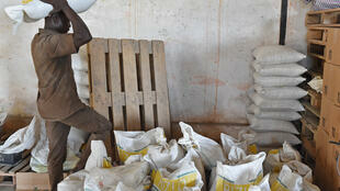 Un homme porte des sacs de riz dans une usine de production de riz à Agboville, dans le sud de la Côte d'Ivoire.