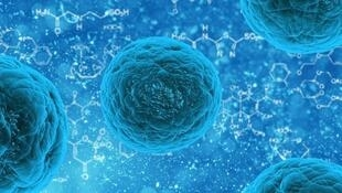 La inmunoterapia, una esperanza en el tratamiento del cáncer. En esta imagen, ilustración de una célula madre.