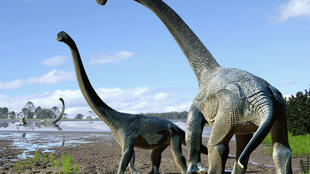 Imagem reconstitui o que seriam Wade e Matilda, representantes das maiores espécies de dinossauros.