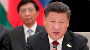 中国国家主席习近平,身后的是主管意识形态的常委王沪宁