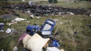 Một số mảnh chiếc  MH17 của Malaysia Airlines, gần làng Grabove, Donetsk. Ảnh chụp ngày  21/07/2014.