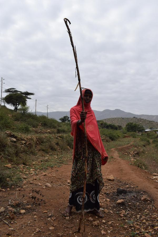 Without the locust invasion, sorghum can grow up to 2 metres in height, in Dire Dawa region, February 13, 2020
