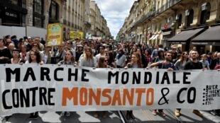 Biểu tình chống tập đoàn Monsanto tại Bordeaux, Pháp, ngày 20/05/2017.