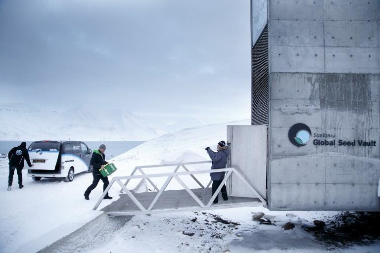 Un homme amène des graines pour qu'elles soient conservées dans la Réserve mondiale de graines du Svalbard.