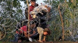 Người tỵ nạn tìm cách vượt hàng rào thép gai tại biên giới Hungary.