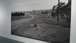 Vue de la route à mvezo, en Afrique du Sud.