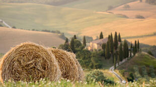 Des champs en Toscane, Italie.