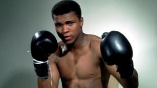 Portrait non daté de Mohamed Ali.