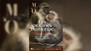 Exposition Les origines du Monde Orsay