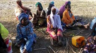 Une vue des femmes du groupement des producteurs de Dassilamé Socé.