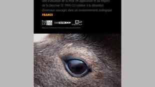 Rapport 2011 de l'association Code animal sur les zoos européens.