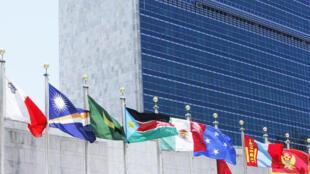 纽约联合国总部门前飘扬的成员国旗帜。