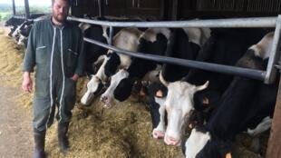 Matthieu Bertrand est exploitant agricole, à une vingtaine de kilomètres de Rouen. Le lait de ses vaches n'est plus collecté.