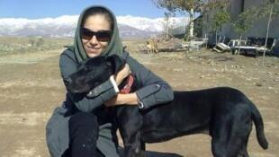 En Iran, certains députés veulent que soient punis tous ceux qui gardent chez eux des chiens ou les promènent en public.
