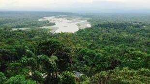 En Ecuador, al menos cien ríos están severamente contaminados. La deforestación anual llega a casi 100.000 hectáreas, según el presidente Moreno.