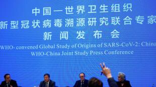 2021-02-10T073801Z_1216288026_RC2JPL9XGXR9_RTRMADP_3_HEALTH-CORONAVIRUS-WHO-CHINA-WHO