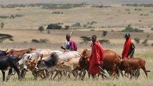Tsananin fari ya haddasa rikicin manoma da makiyaya a yankin arewacin Kenya
