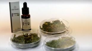 Apresentação da maconha medicinal em forma de óleo.