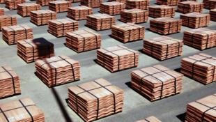 Cathodes de cuivre.