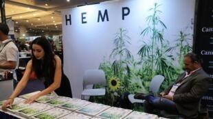 Le stand du magazine «Hemp», spécialisé sur le cannabis, au Congrès mondial du cannabis à New York, le 16 juin 2017.