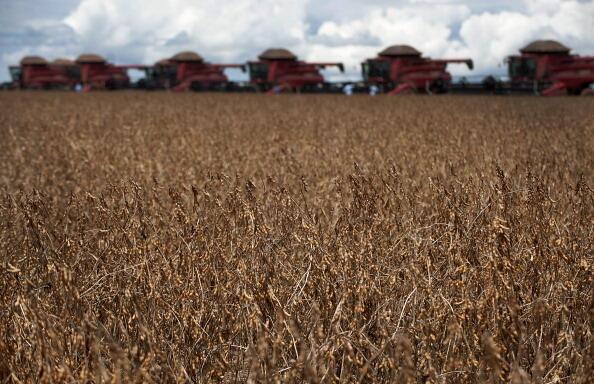 Colheita de soja na fazenda Morro Azul perto de Tangara da Serra, no Mato Grosso.