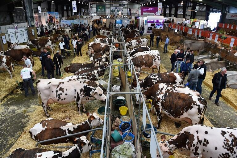 پنجاهوپنجمین نمایشگاه بینالمللی کشاورزی پاریس ٢٠۱٨