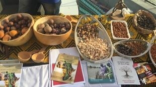 Convivium movement lays out a selection of grains and seeds traditionally grown in Senegal and West Africa before rice was introduced as a cash and food crop.