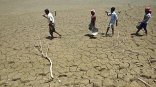 25 % diện tích Ấn Độ trước nguy cơ sa mạc hóa.