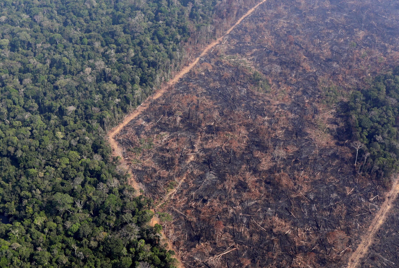 Nông dân phá một khu rừng Amazon để lấy đất canh tác, gần Porto Velho, Brazil, ngày 29/08/2019