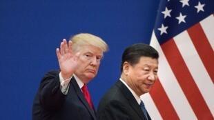 Les présidents des Etats-Unis Donald Trump (g) et de la Chine Xi Jinping, le 9 novembre 2017 à Pékin.