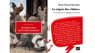 Introduction aux études animales_dardenne_mépris des bêtes_marsolier